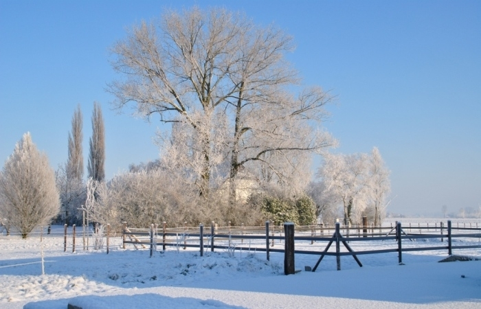 Winter-stal-de-elsthof